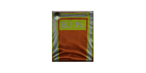B.I.N.