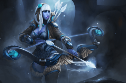 The Frostborne Wayfarer