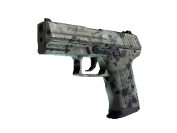 P2000 | Granite Marbleized (Minimal Wear)
