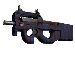 P90 | Teardown (Minimal Wear)
