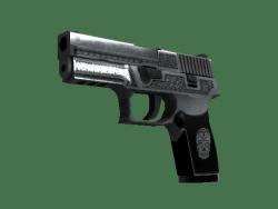 StatTrak™ P250 | Cartel (Minimal Wear)