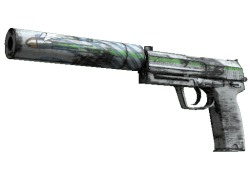 Souvenir USP-S | Road Rash (Well-Worn)