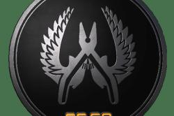 Guardian Elite Pin