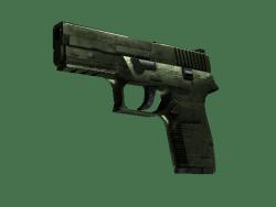 P250 | 铠甲 (崭新出厂)