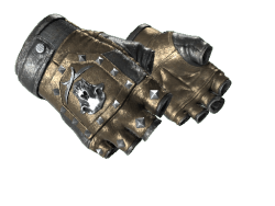 ★ Bloodhound Gloves | Bronzed (Field-Tested)