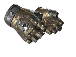 ★ Bloodhound Gloves | Bronzed (Well-Worn)