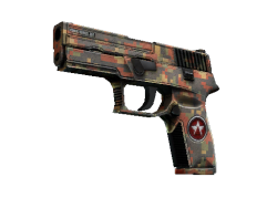 P250   Red Rock (Field-Tested)