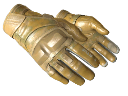 ★ Moto Gloves | Transport (Minimal Wear)