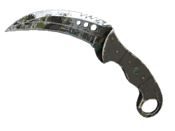 ★ Talon Knife | Boreal Forest (Battle-Scarred)