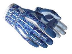 ★ Sport Gloves | Amphibious (Factory New)