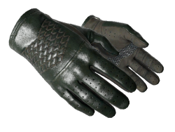 ★ Driver Gloves | Racing Green (Factory New)