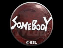 Sticker   somebody   Katowice 2019
