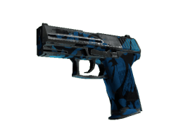 P2000 | Oceanic (Battle-Scarred)