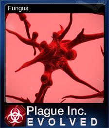 246620-Fungus