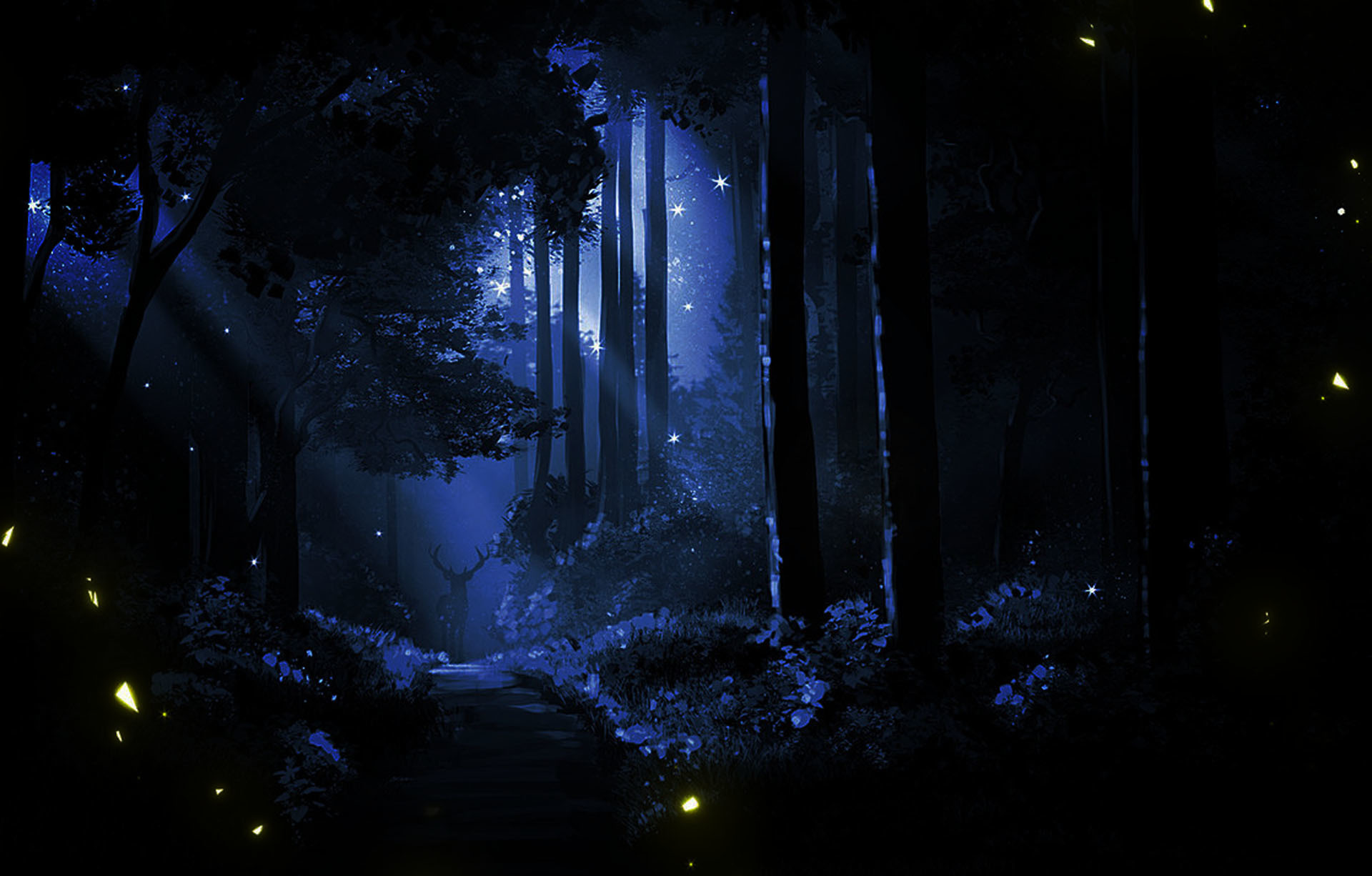 573210-Night Forest